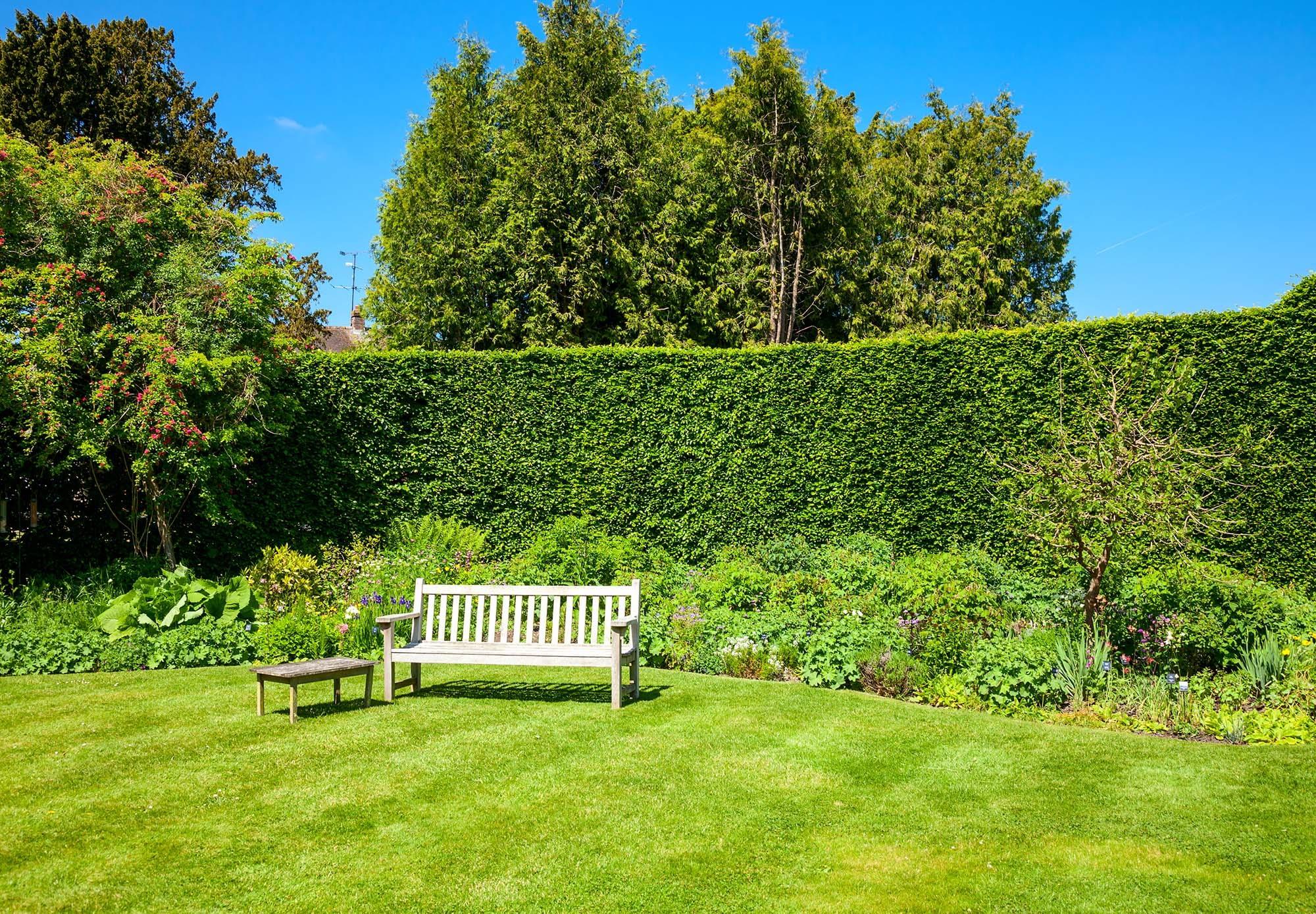 Great British Lawns customer Lawn 3