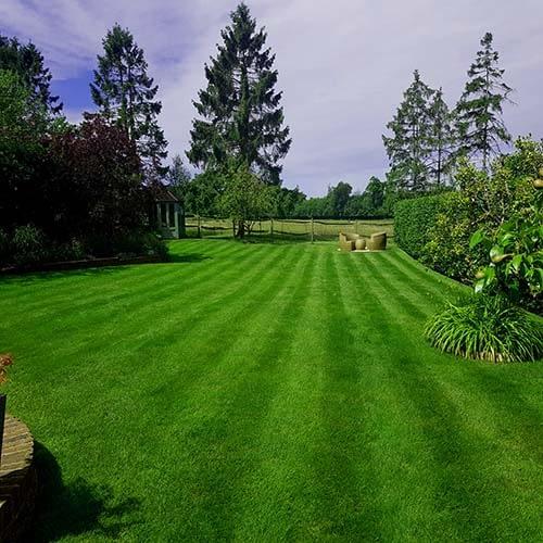 Great British Lawns Pic 9