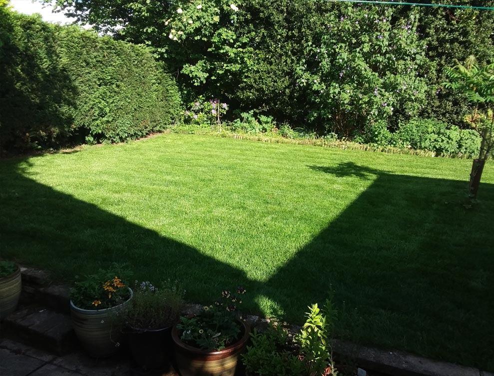 Great British Lawns pic 6