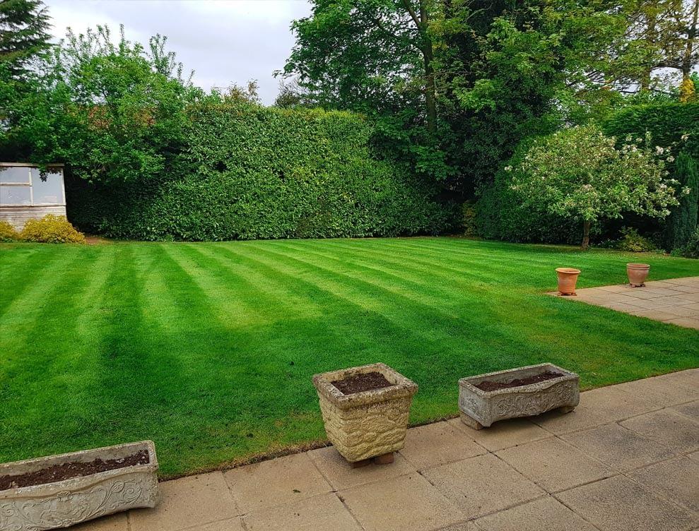 Great British Lawns customer pi 4